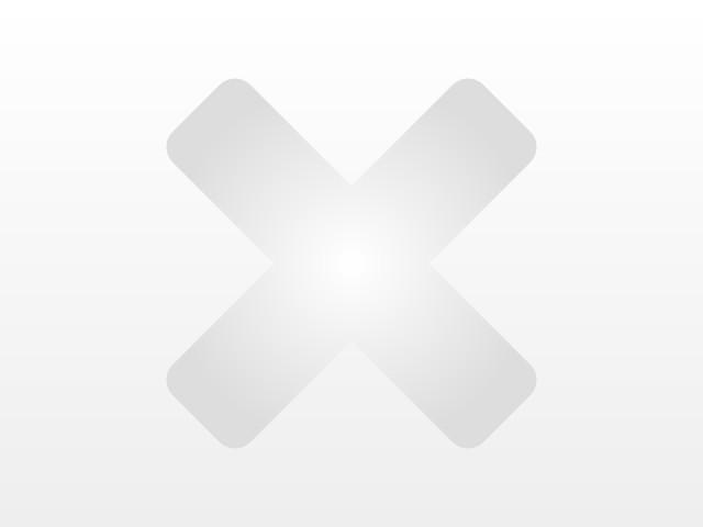 A3 1.6 TDI XENON + NAVI + TEMPOMAT + SITZHEIZUNG + ALU