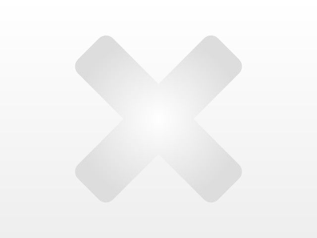 Volkswagen Caddy Kasten 2.0 TDI DPF Klima Holzboden Heckflügeltüren vorb. AHK